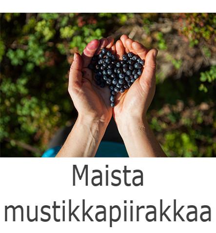 Maista mustikkapiirakkaa